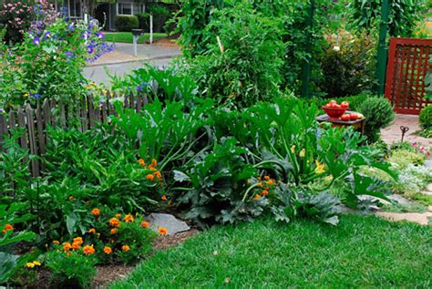 Edible Landscaping Rosalind Creasy Vegetable Gardening What To Plant Where In A Vegetable Garden