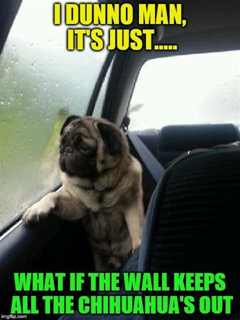 I Dunno Meme - introspective pug imgflip