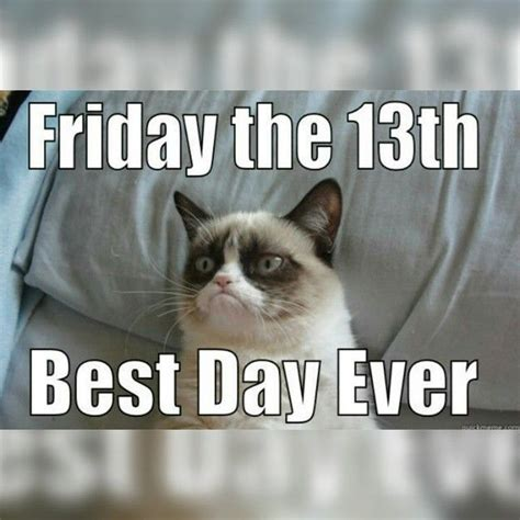 Grumpy Cat Friday Meme - 378 best sunday thru saturday images on pinterest