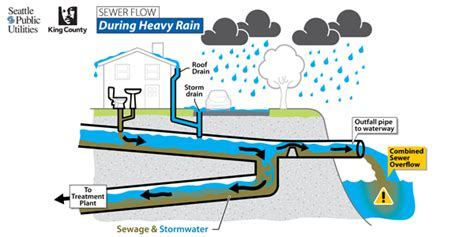 design guidelines for stormwater quality improvement devices background seattle public utilities