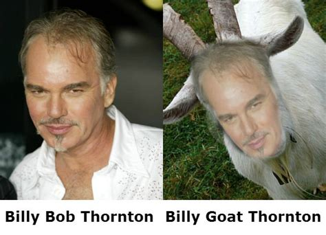 Billy Goat Meme - billy bob goat thornton comparison memes pinterest