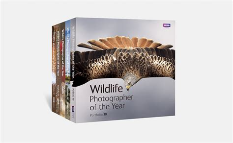 a nature companion wildlife through the year books david brimble wildlife photographer of the year