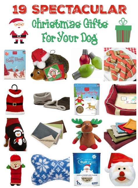 19 christmas gifts for dogs of all sizes