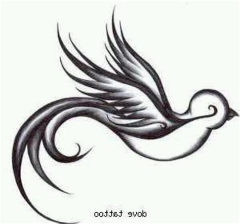 tribal dove tattoo designs tribal dove design jpg 720 215 672 tattoos