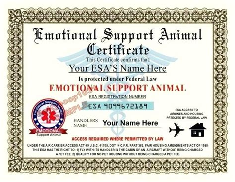 housing certification letter emotional support animal letter housing citybirds club