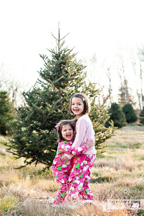 christmas tree farm in logan utah pizzuti cuties photography tree farm mini sessions 11 15 sterling ma pizzuti
