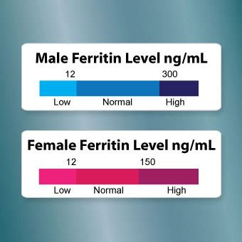 ferritincheck iron deficiency test stressnomore iron