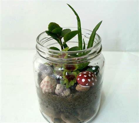 diy garden   jar     terrarium home diy