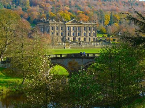 pemberly yorkies lyme park disley cheshire uk great britain lyme park parks and