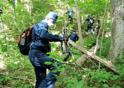 Search For In Japan Search Continues For 7 Year Left In Japanese Forest As Ncpr News
