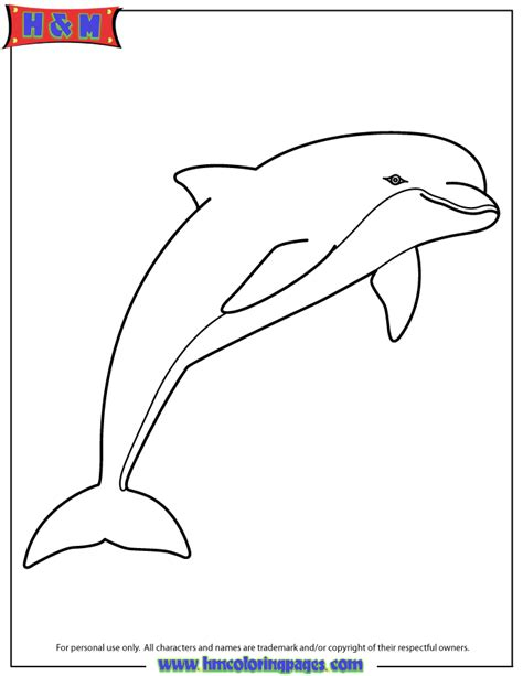 coloring page bottlenose dolphin pink dolphin coloring page h m coloring pages