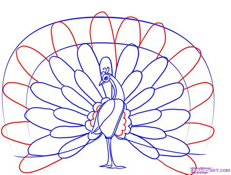 Easy Way Of Drawing Peacock