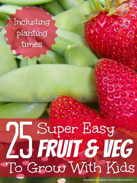 best fruit and veg to grow with kids gardens fruits and