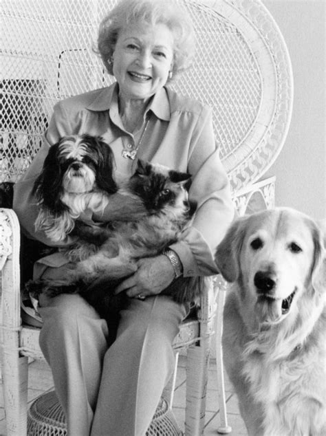 betty white golden retriever grow with dogs golden retriever rescue of southern maryland