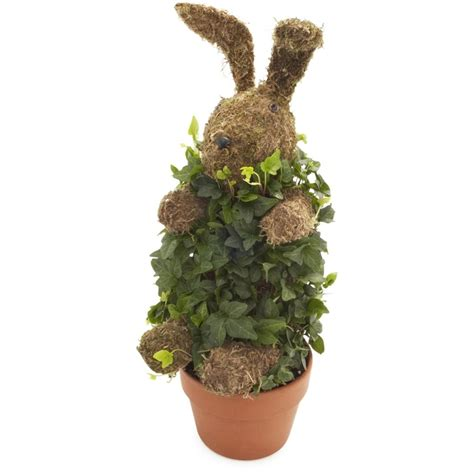 rabbit topiary topiary bunny want or need