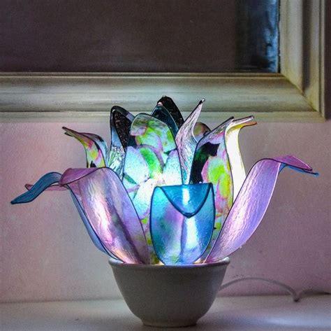orchidea nera fiore oltre 25 fantastiche idee su orchidea nera su