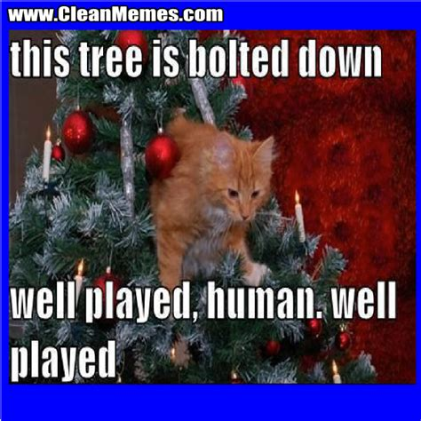 christmas memes clean memes the best the most online