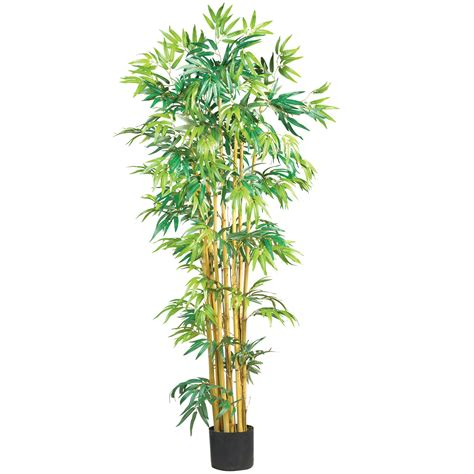 5 foot multi bambusa bamboo tree potted 5179 nearly natural
