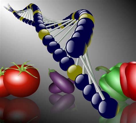 epigenetica e alimentazione dieta gastrosofica benessere ed epigenetica