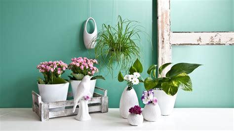 fioriere da parete fioriere da parete dettagli di stile sul tuo muro