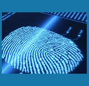 trust background investigation background investigation investigator
