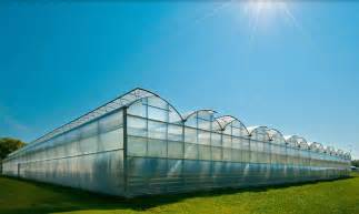 commercial greenhouse manufacturer rough brothers inc