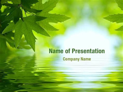 Powerpoint Templates Leaves Free | leaves powerpoint templates leaves powerpoint