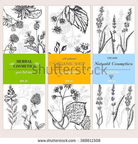 label design layout cosmetic label stock images royalty free images vectors