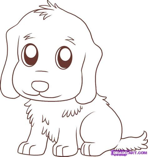 are golden retrievers easy to how to draw a labrador step by ankaperla