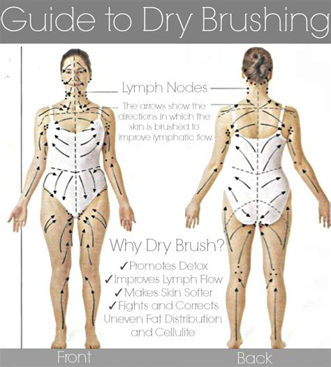 Brushing To Detox by Skin Brushing Guide Rejuvenate Your Skin Fight