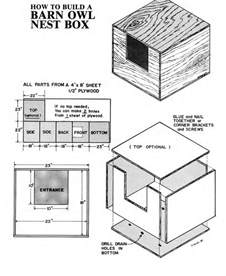 Kid Friendly House Plans - barn owls pest killers at large