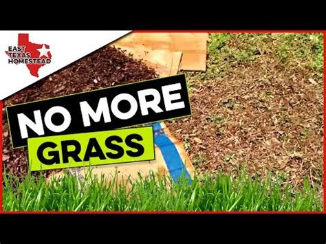 prevent weeds in flower beds learn how to prevent weeds in flower beds organically