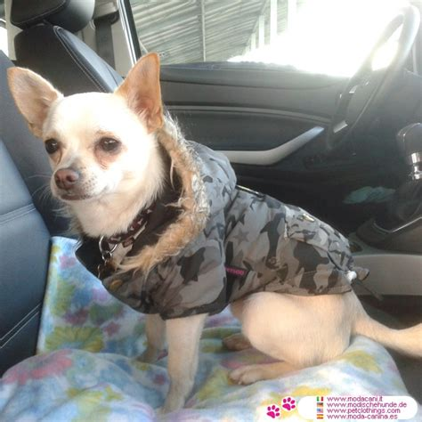 shipping puppies by air green camo jacket air for small dogs like chihuahua poodle shipping to usa