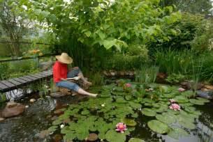 garten teich teich anlegen tipps zu planung bepflanzung und mehr