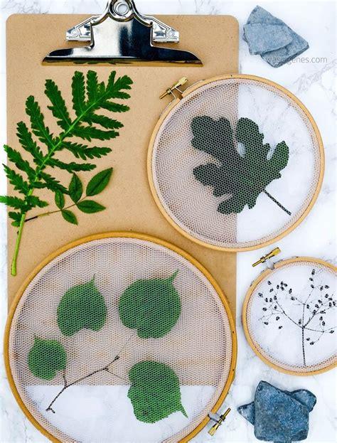 Pflanzen Deko Kreativ Und Selbstgemacht by Die Besten 25 Getrocknete Blumen Ideen Auf