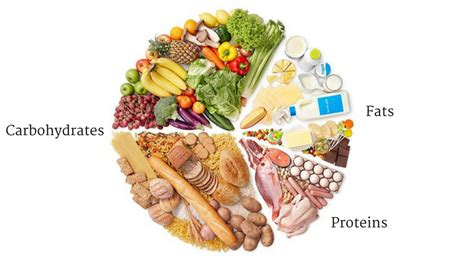 carbohydrates definition and importance what are macronutrients how to combine the