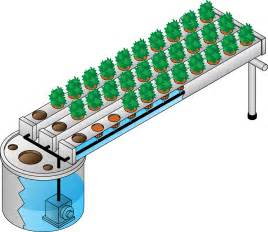 Garden Growing System Hydroponics And Aeroponics Gardening Systems Plant Nutrients