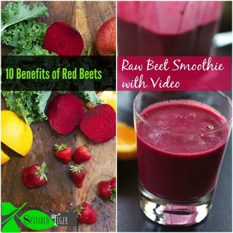 Vitamix Detox Recipe Book by 84 Best Weight Loss Protein Shake Recipes Images On
