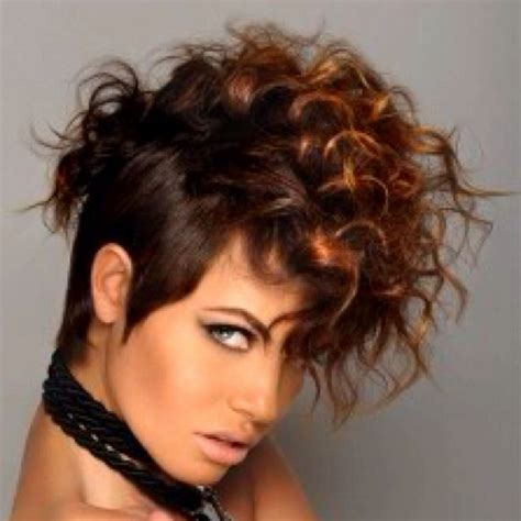 short curly hair highlight pictures short curly hair with highlights hairs picture gallery