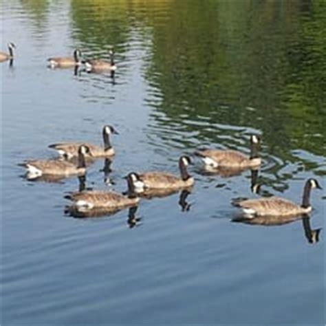 boat rental green lake seattle greenlake boat rentals greenlake seattle wa
