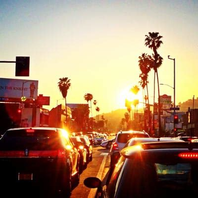 Pch And Sunset Blvd - sunset boulevard 24 photos local flavor hollywood hills west los angeles ca