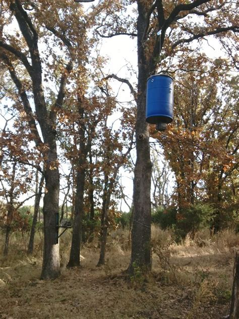 How To Hang A Deer Feeder deer feeder coon proof oklahoma shooters