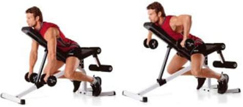 incline bench substitute reverse grip incline bench 2 arm dumbbell rows strong