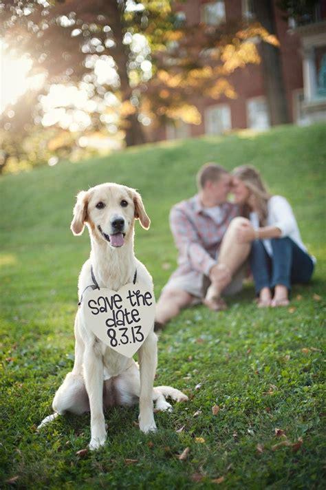 Hochzeitseinladung Hund by Wedding Invitation Cutedog Puppylove Weddingdog