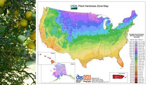 Garden Zones Ohio Kristen Baumlier