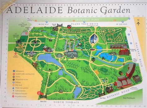 Botanic Gardens Adelaide Map Botanic Gardens Adelaide Map Adelaide Botanic Garden Learn Play Explore Play And Go Paul