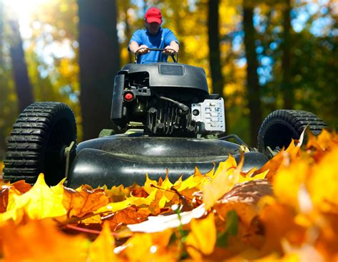 fall landscaping tips fall landscaping tips