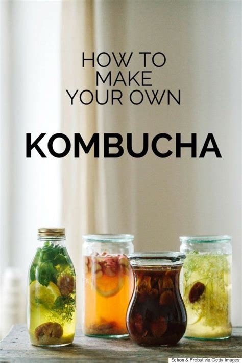How Often Should You Drink Detox Tea kombucha what you need to we what is and need to