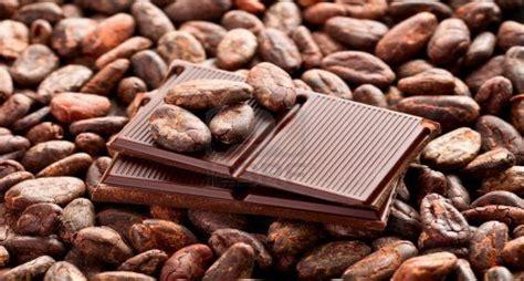 Kaos Kopi Unik Pertama Di Indonesia menelisik sepenggal sejarah cokelat indonesia pertama ditanam di depok okezone lifestyle