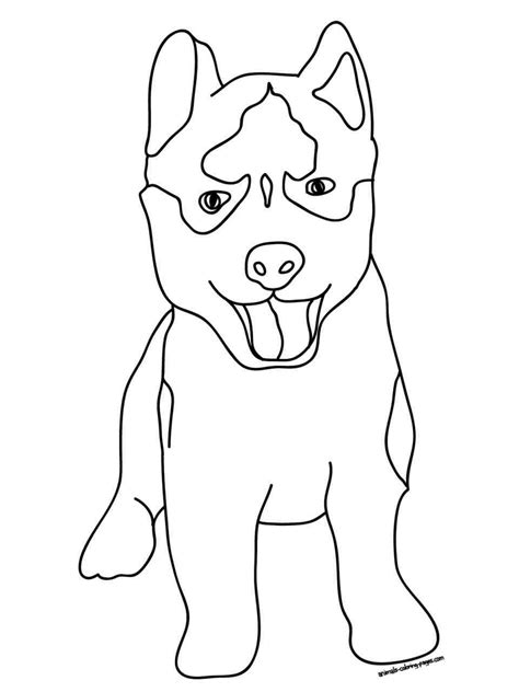 coloring pages of pitbull dogs pitbull coloring pages coloring home